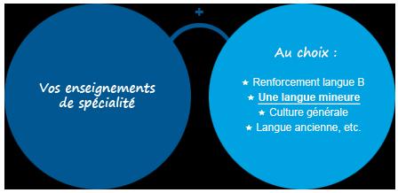 LEA schema de presentation langue majeure et mineure