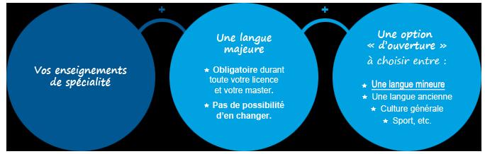 Schema présentation langue majeure et langue mineure