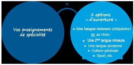 LLCER  1schema de presentation langue majeure et mineure