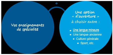 LLCER  2-3 schema de presentation langue majeure et mineure