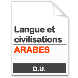 maquette formation DU Langues et civilisation arabes