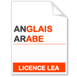 maquette formation licence lea anglais-arabe