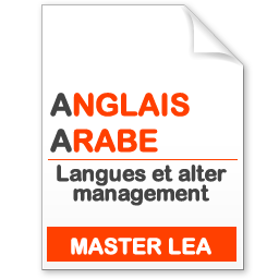 maquette formation master Langues et alter management anglais-arabe