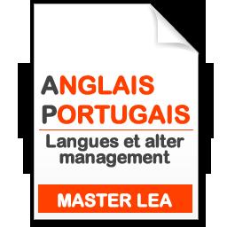 maquette formation master Langues et alter management anglais-portugais