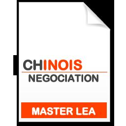 maquette formation master Négociation de projets internationaux chinois