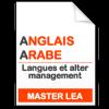 maquette formation master Langues et alter management anglais-arabe