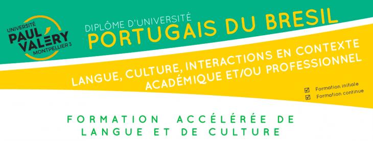 Portugais du Brésil : langue,culture, interactions
