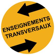 Licence LEA - Enseignements transversaux