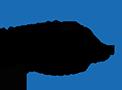 Logo de Paul Valery ufr2